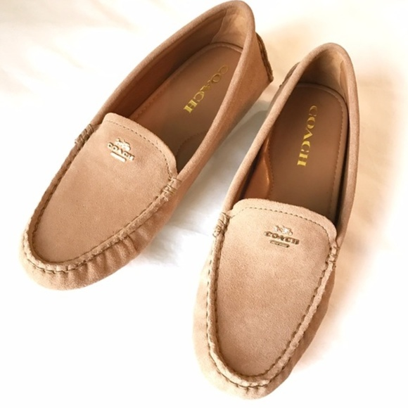 28218b731d9 NWB Coach Camel Amber Suede Driving Loafers Flats
